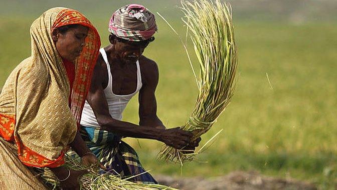 পশ্চিমবঙ্গে নতুন সরকারি প্রকল্প ...